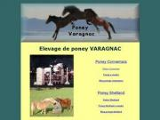 Elevage de Poney VARAGNAC